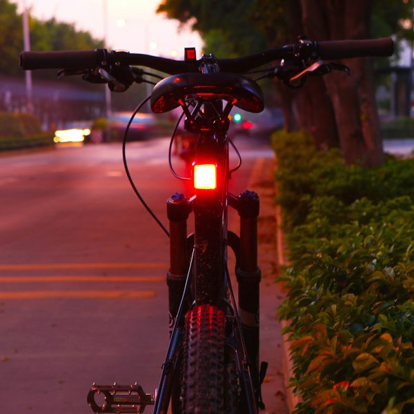 seemee 60 tail light mounted